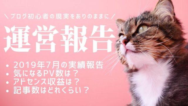 ブログ運営報告 猫