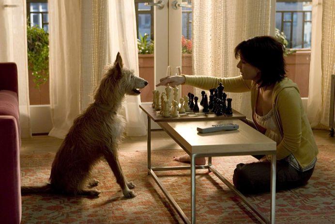 【イルマーレ】ケイトと犬 (1)