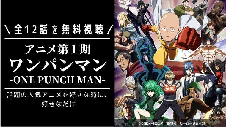 アニメ「ワンパンマン第1期」