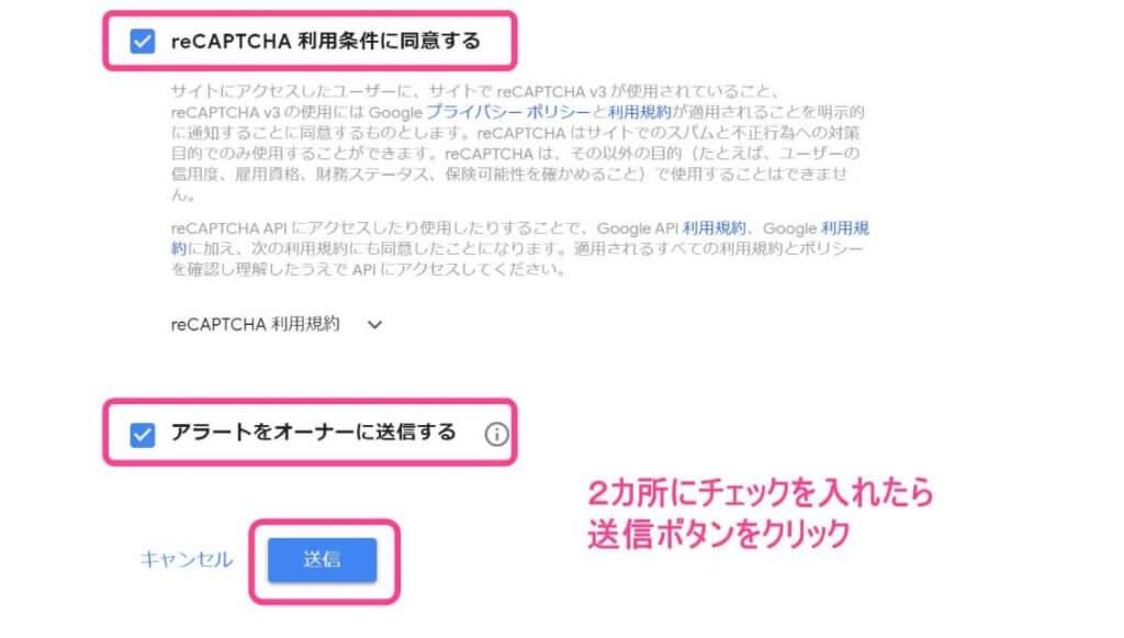 reCAPTCHAへのアクセス画面3